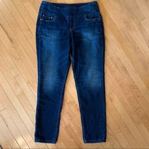 JAG Jeans Size 14 High Rise Skinny Pull On Jeans